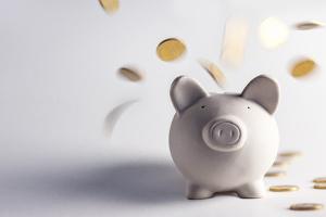 Beim Bußgeld kann die maximale Höhe je nach Gesetz variieren.