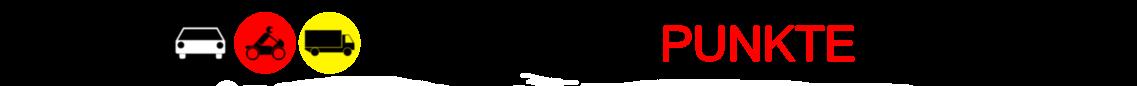 Logo von flensburgpunkte.net